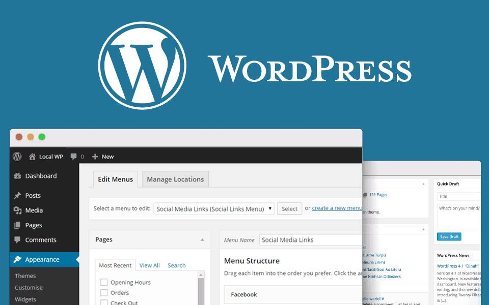 WordPress Web sitesi